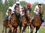 bigstock-Horse-Racing-1682423